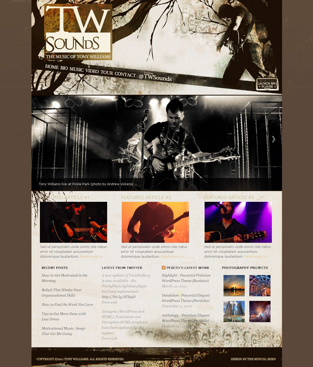 Tony Williams Website Design